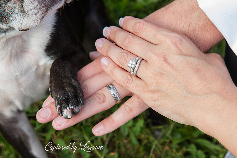 wedding-photo-dog-illinois